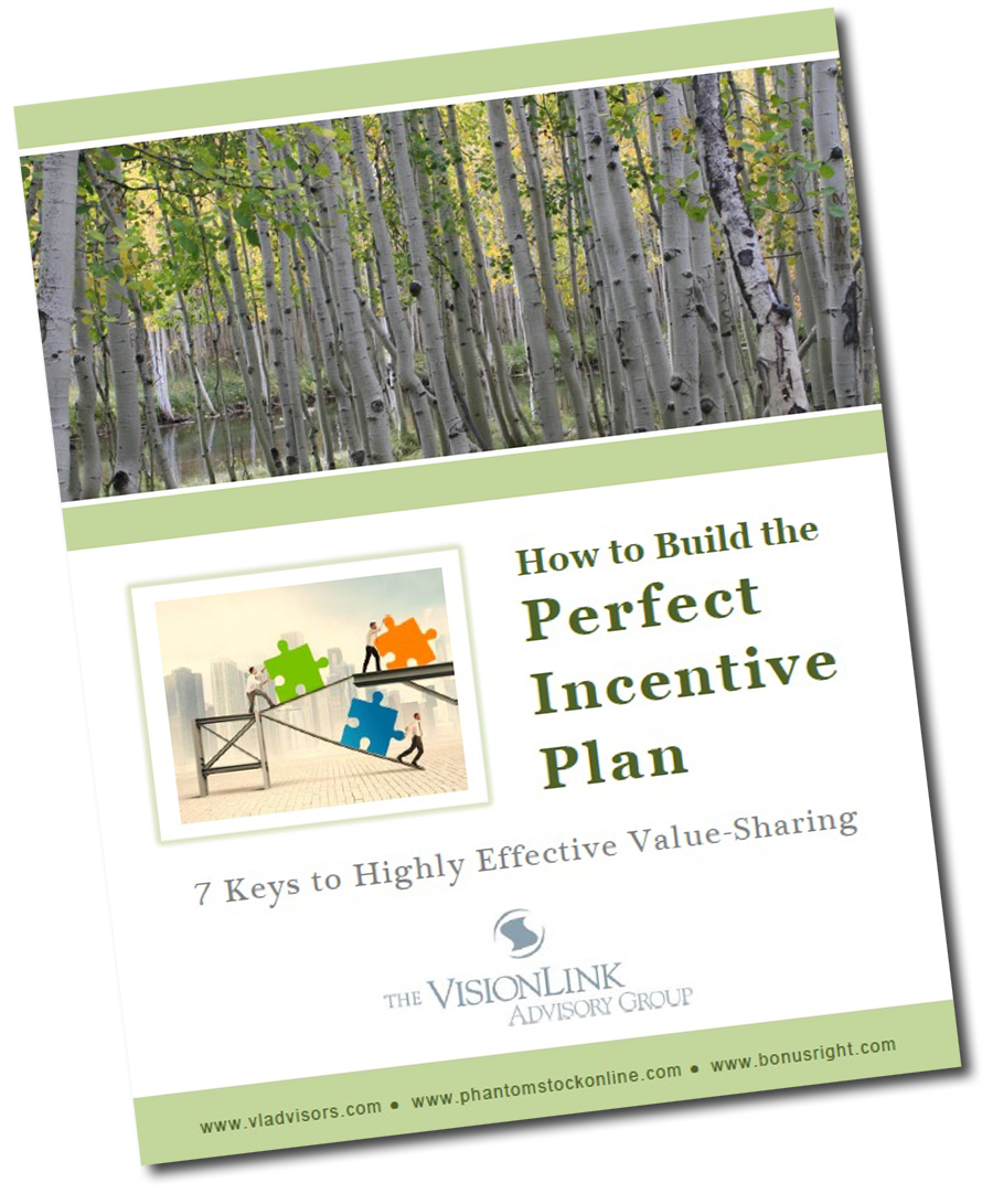 How to Build the Perfect Incentive Plan White Paper
